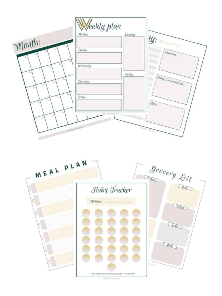 Free Organizational Printables for Moms